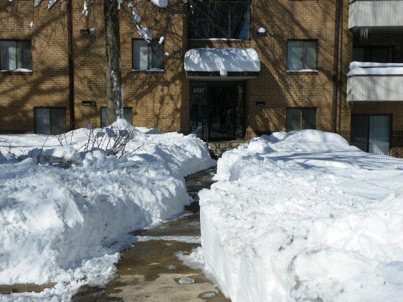 Snowfall 006